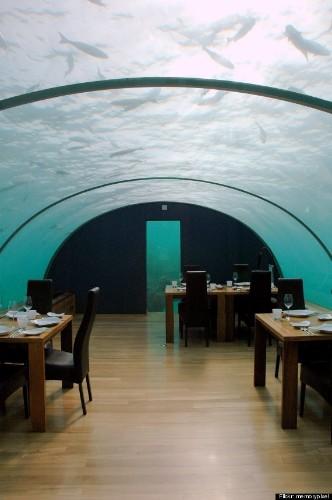 6 Bizarre Dining Experiences Around The World