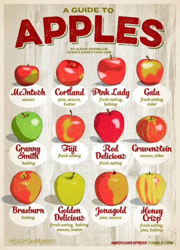 A Guide To Choosing The Best Apple For Pies, Cider And More