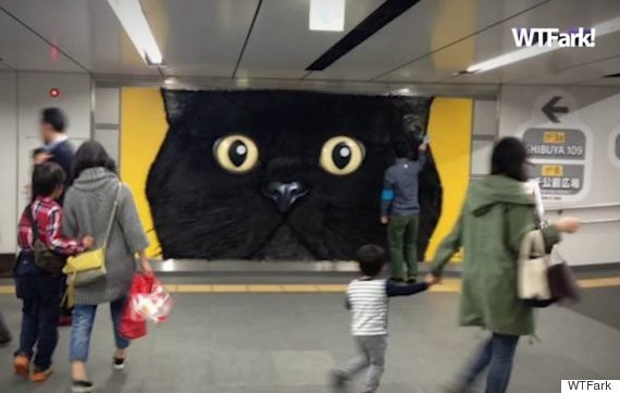 Japanese Shipping Company Advertises With ... Giant Pettable Cat Head??