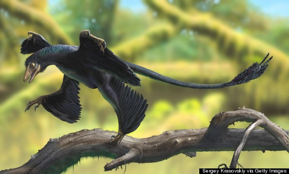 Complete Tiny Dinosaur Skeleton Discovered In South Korea