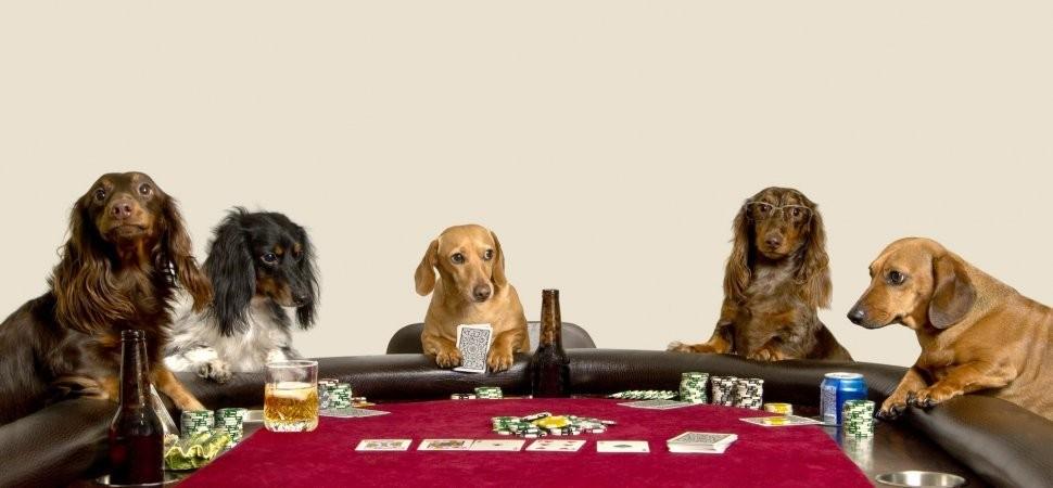 Poker - cover