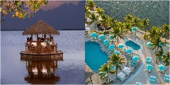 Discover florida resorts