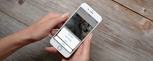 How to Save Images, Pictures & Photos from an iPhone Message or Email
