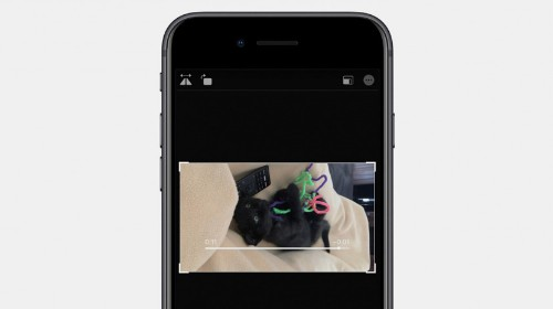 How to Rotate Videos on the iPhone with iOS 13