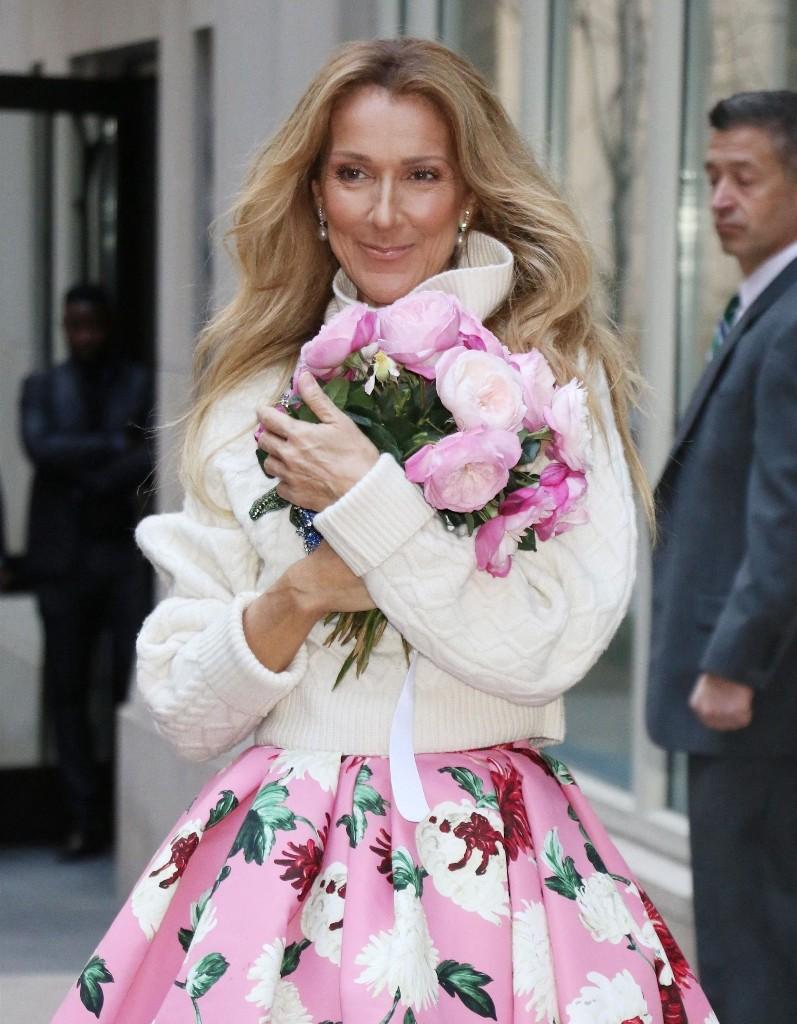 Céline Dion victime de harcèlement : « Des remarques sur mon corps, qui ressemblent plus à des avances » - Elle