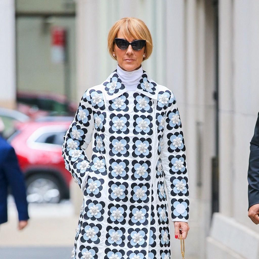 Céline Dion change radicalement de coupe de cheveux pour l'automne - Elle