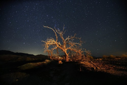 National park photo ops: The best way to catch desert stars