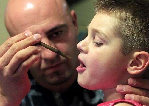 Marijuana extract tames debilitating brain seizures without the buzz - Los Angeles Times