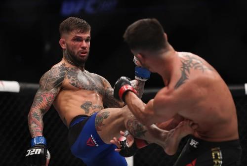 UFC greets its new bantamweight champion, Cody Garbrandt, as a star