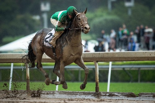 Will Nyquist win the Preakness? These factors may make the difference