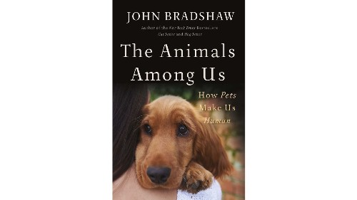 Curl up with your pet — and a good book: 12 great new pet reads