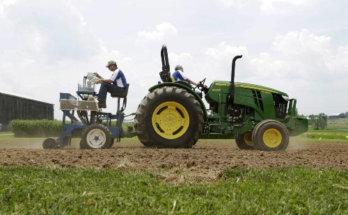 A tip for American farmers: Grow hemp, make money