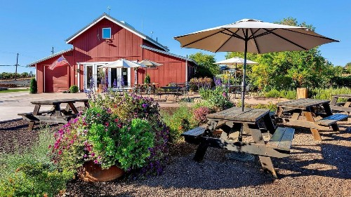 In California's Amador County, spend a weekend sipping Zinfandel from ancient vines