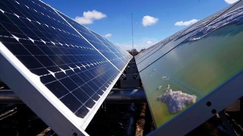 U.S. utilities seek solar power as Trump sides with coal, fossil fuels