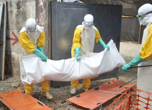 Blood transfusions from Ebola survivors don't help patients after all, study finds