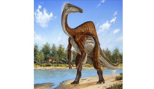 With extra-long arms, Deinocheirus mirificus was one weird dinosaur - Los Angeles Times