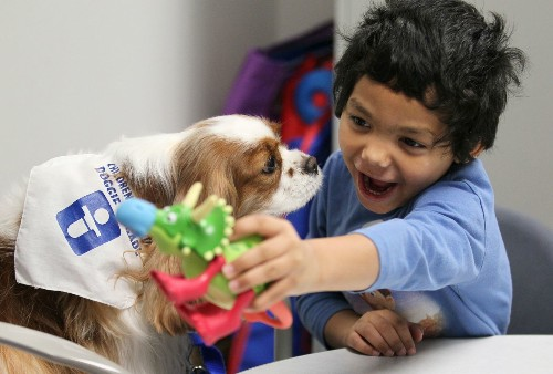 Study narrows down genetic suspects in autism - Los Angeles Times