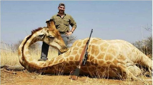 Idaho Fish and Game official resigns after posing with animals he killed on Africa hunting trip - Los Angeles Times
