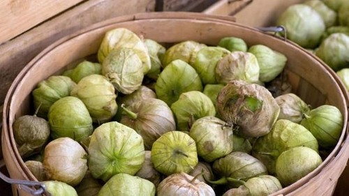 Farmers market report: Tomatillos are in season. We have recipes.