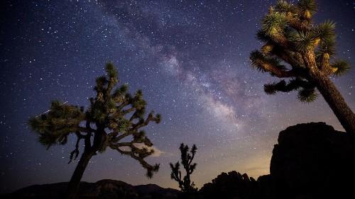 Dark Sky designation puts Joshua Tree National Park in a new light