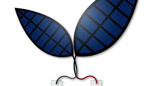 Part microbe, part machine: Bionic leaf sucks up carbon dioxide as it makes liquid fuel