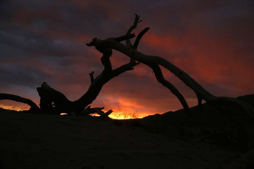 National park photo ops: Go for the dramatic in those Death Valley dunes