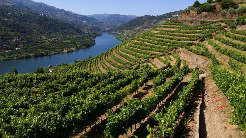 Take cooking classes, visit wineries, yacht down Douro River on Portugal tour