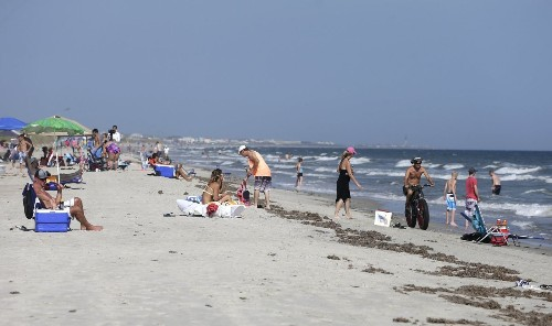 North Carolina shark attacks are 'going to go away,' expert says