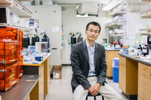 MacArthur 'genius' grant winner creates artificial leaves that photosynthesize - Los Angeles Times