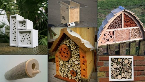 Why you need to build a beautiful 'bug hotel' in your backyard
