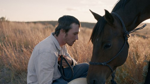 'The Rider' wins best picture from the National Society of Film Critics, edging out 'Roma' - Los Angeles Times
