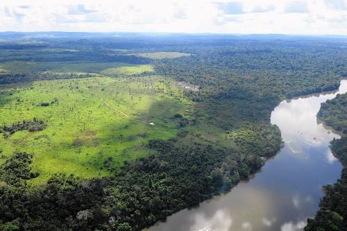 Increase in rate of Brazilian Amazon deforestation raises alarm