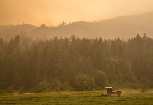 Washington state's wildfires rage beyond 600,000 acres