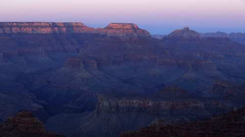 As Grand Canyon National Park celebrates centennial, climate change is putting its wildlife at risk