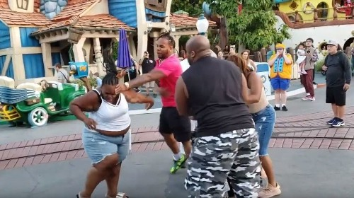 Video shows violent family fight at Disneyland as stunned parkgoers try to intervene
