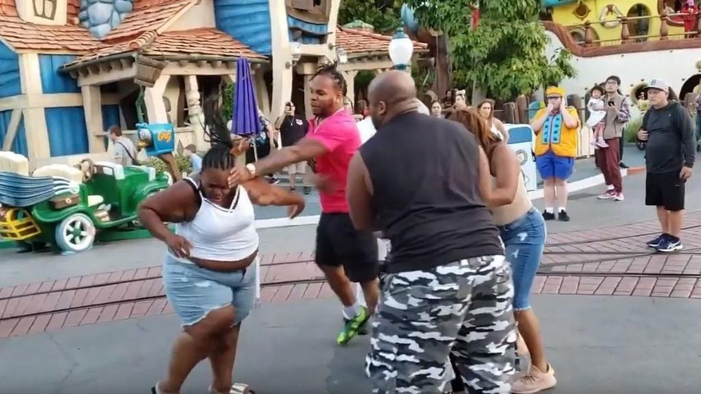Disneyland Fight - cover