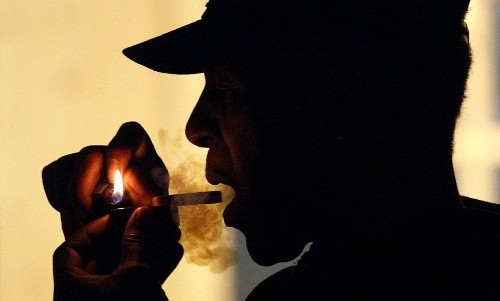 Regular pot smokers have shrunken brains, study says - Los Angeles Times