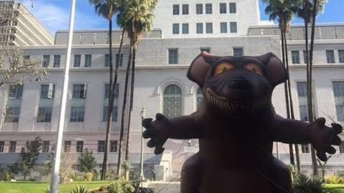 Deploy an 'army of cats' to catch L.A. City Hall's rats? Not so fast