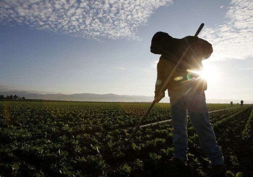 Report identifies most common sources of food-borne illnesses
