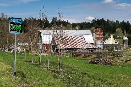 Washington state: Wolves, wine, farms on this self-guided road trip south of Olympia - Los Angeles Times
