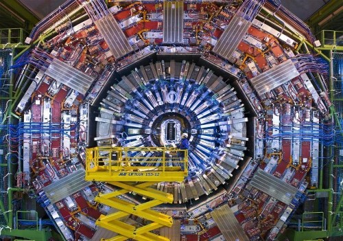 Large Hadron Collider finds long-sought signs of rare particle decays