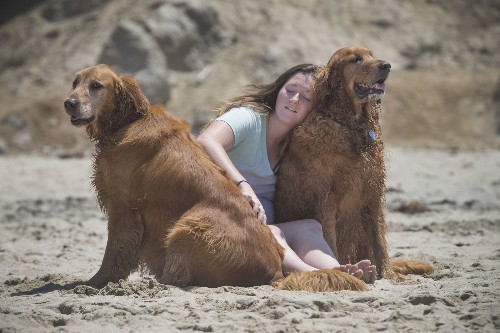 Make the world a better place: Watch a cute animal video - Los Angeles Times