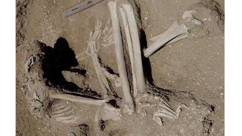 What a 10,000-year-old massacre can tell us about the origins of human violence
