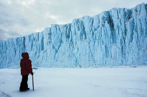 In 'Antarctica,' human element adds warmth to frigid land - Los Angeles Times