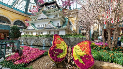 Spring in Las Vegas brings blossoms inside. Take a peek at the Bellagio's garden