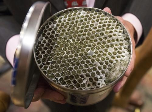 Florida, New York latest states pulled into medical marijuana debate