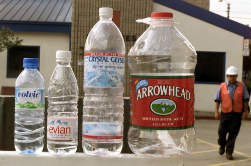 These newly discovered bacteria can eat plastic bottles
