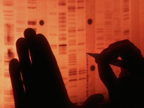 Cancer trials aim to shore up 'precision medicine's' base of evidence