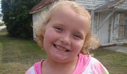 'Here Comes Honey Boo Boo' family in car accident