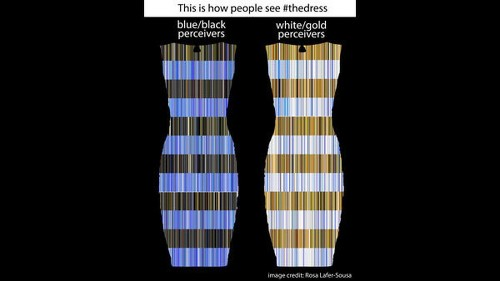 Science explains how time spent outdoors colors your view of #thedress
